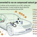 CNG to be used in UAE public transport