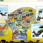 Dubai Safari Map