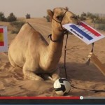 Shaheen the Camel predicts World Cup winner
